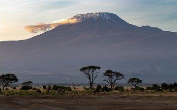 Buy tickets to Сходження на Кіліманджаро: